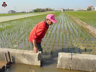 農漁民生活補貼 99萬人免申請即可入帳