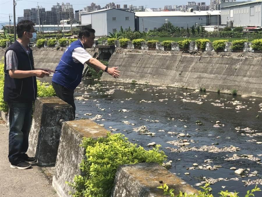 台中市府表示,水利局啟動魚屍清理作業,預計今日下午清理完畢。(盧金足攝)