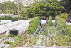 中崎農場二階段環評 環保署明攻防