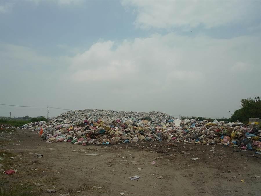 雲林縣口湖鄉垃圾堆置轉運場累積超過2000噸垃圾,堆積成山引發民怨。(張朝欣攝)