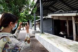 荒廢近4年 台東兒童故事館日式建築明年此時完成修復