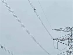 不是鳥!高壓電線上有人影 她一看驚喊:風超大