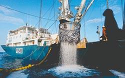 振興案受惠少 遠洋漁民嘆怎麼活