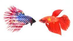 前白宮對華事務主管:美陸已由競爭轉為敵對關係