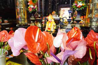 11宮廟推廣敬神用火鶴 「以花代香」讓空氣更清新