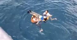 搭船賞鯨突跳海 醉男呈「十字狀」漂浮