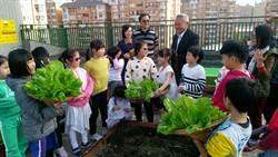 象農夫提供台北市校園綠化免費諮詢及輔導