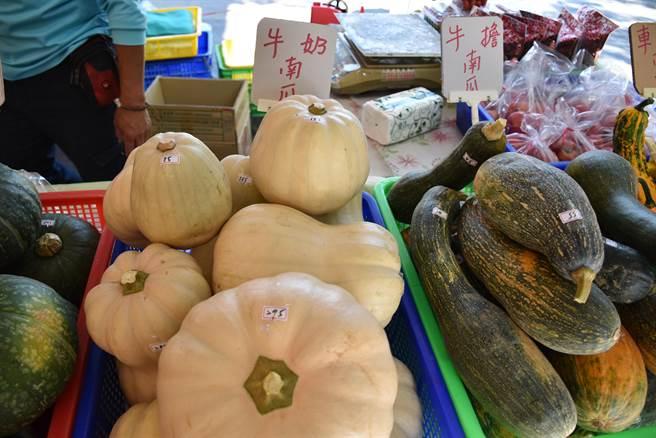 造橋鄉農會力推牛奶南瓜,含有牛奶香味。(謝明俊攝)