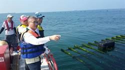 台南推動環保養蚵 3年內全面汰換保麗龍浮具