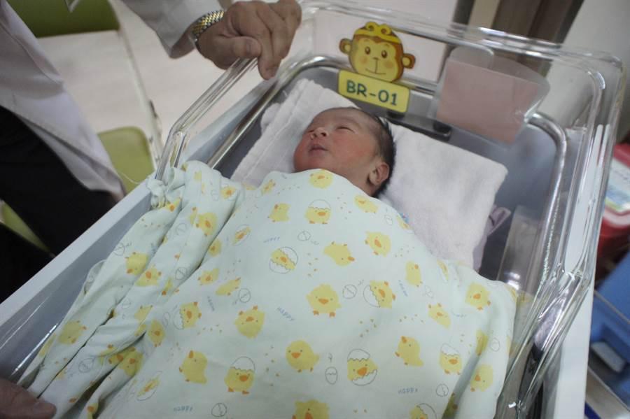 台中市衛生局承辦國民健康署委辦「周產期高風險孕產婦(兒)追蹤關懷計畫」,完善高風險孕產婦的照護,守護寶貝健康成長。(馮惠宜攝)