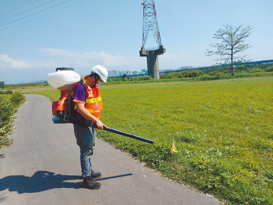 竹北市興隆路河堤草皮近年常發現紅火蟻蹤跡,相關單位定期施藥、防治,以免蟻害叢生。(莊旻靜攝)