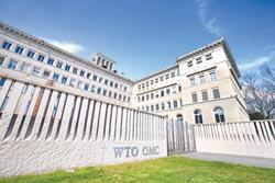 WTO代表懸缺8個月 國際賽打假的