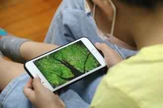 七成五家長讓幼兒看YouTube 19%受到不良影響