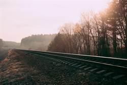 陸交通建設新里程碑 取消487個省界收費站