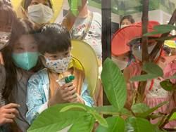 防疫新生活 桃園遠百邀親子賞竹節蟲認識甲蟲