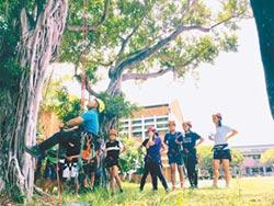 攀樹剪枝如蜘蛛人 不怕修過頭