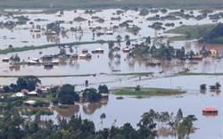 三禍齊發!東非慘遭新冠洪水蝗災夾擊