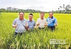 《農民退休儲金條例》三讀 農民滿65歲可按月領退休儲金