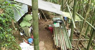 扯!遊客在溪頭園區蓋竹棚 最重恐關5年