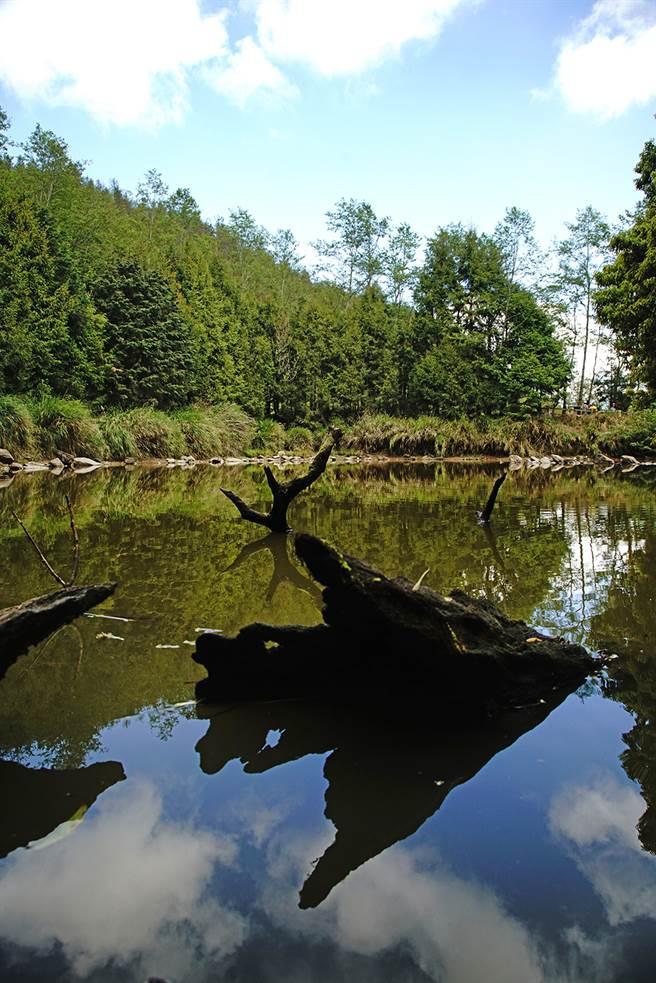 被形容是天堂入口的天池,藍天綠樹倒映池心,果然有世外桃源的悠然境界。(攝影/曾信耀/Takao樂高雄/提供)
