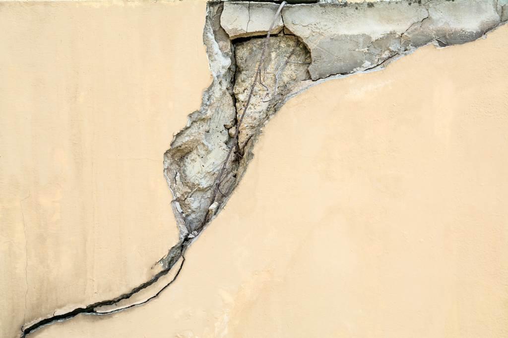 牆壁「長出樹根尾巴」網驚:房子快不保了(示意圖/達志影像)