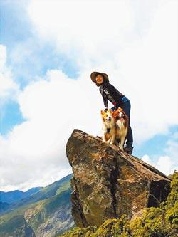 2隻牧羊犬 療癒王頌恩失親痛