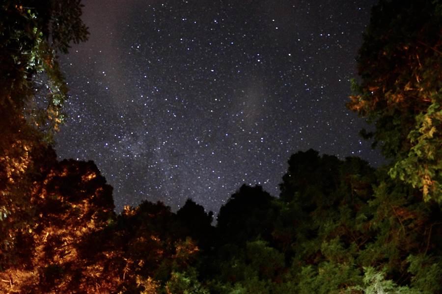 觀霧國家森林遊樂區夜晚繁星點點。(圈谷資訊公司提供/羅浚濱新竹傳真)