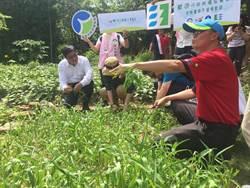 環保署長參訪虎山實小 大讚台灣生態學校典範