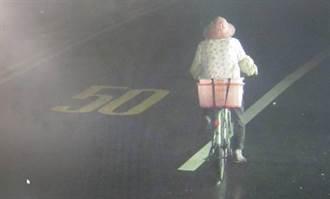 老妇迷途骑脚踏车近百公里警调监视器找到人