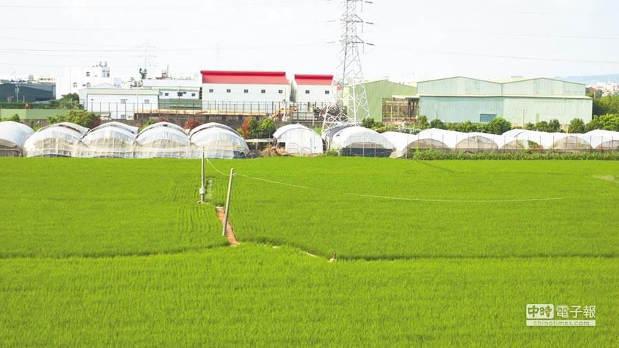 違章工廠的命運,取決於地方政府的作為。圖中工廠非違章工廠。(謝瓊雲攝)