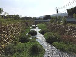 食水嵙溪管虹吸式管狀魚道 提供保育類台灣白魚洄游