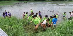 垂楊國小學童里山列車之旅 幫水雉整理舒適的家