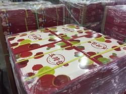 高雄首波玉荷包荔枝外銷日本超過50公噸