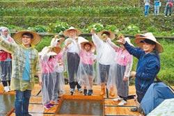 柯文哲親自導覽帶小朋友一起復育臺灣水韭