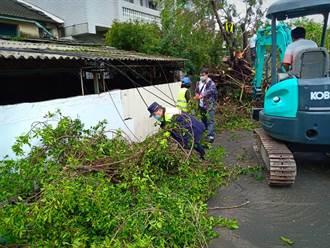 路樹橫倒居民受困 人民保姆協力排除