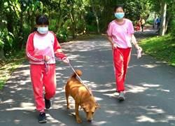 竹市南華國中「搖尾巴社」照顧毛小孩找到家
