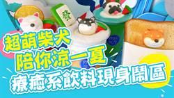 【玩FUN飯】超萌柴犬陪你涼一夏 療癒系飲料現身鬧區