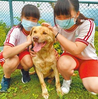 南華國中搖尾巴社 學習愛毛孩