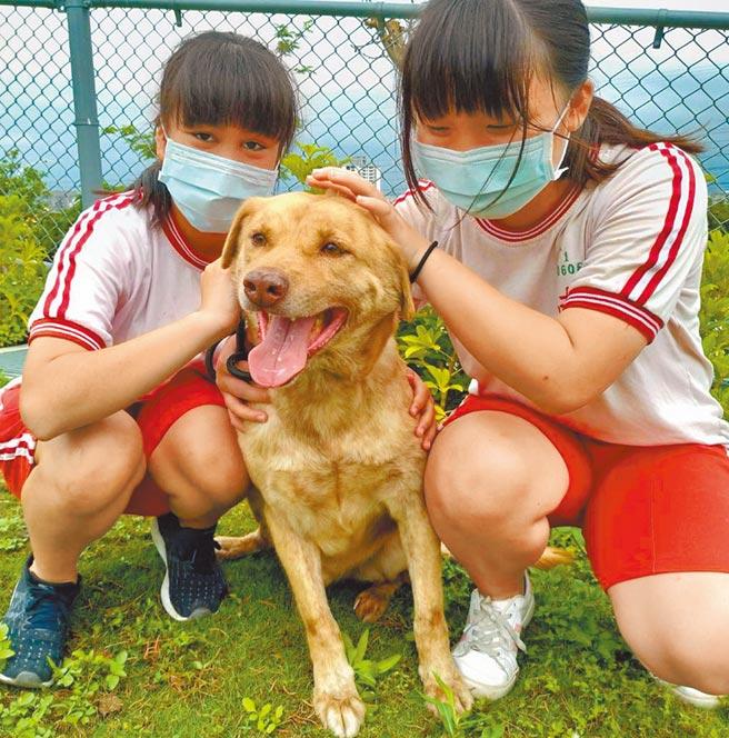 南華國中「搖尾巴社」學生陪伴動保園區毛小孩變得喜歡親近人。(新竹市政府提供/羅浚濱新竹傳真)