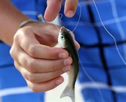 10公分活魚卡喉嚨 駭人畫面曝光