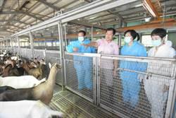 疫情趨緩縣長化身代言人 行銷彰化優質優質農特產品