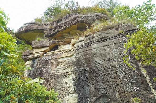 雲林縣古坑鄉草嶺青蛙石是永久不敗景觀。
