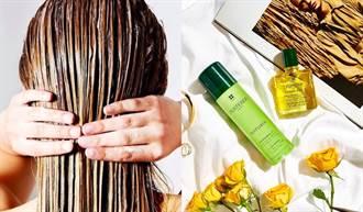擺脫夏季頭髮扁塌出油!3大養護攻略終結濕熱危機