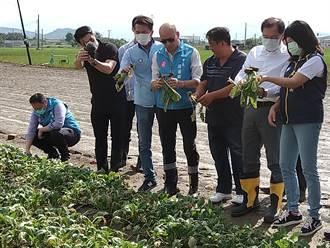 5月豪雨農損 梓官區即日起申請現金救助