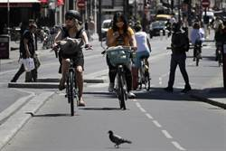歐洲解封 自行車銷量爆增數倍 陸訂單接不完