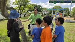 響應世界環境日 官小學童盤點保護校內台灣原生植物