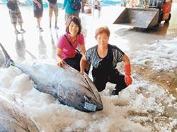 台東黑鮪魚來了 香港朋友享口福