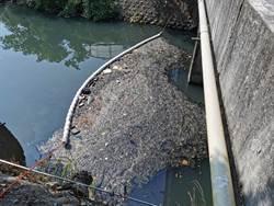 苗縣增設河川攔汙網 竟清出20噸塑料、動物屍體垃圾