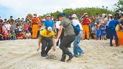 小琉球淨灘 野放海龜返大海