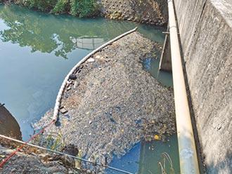 苗縣河面攔除網 清出20噸垃圾